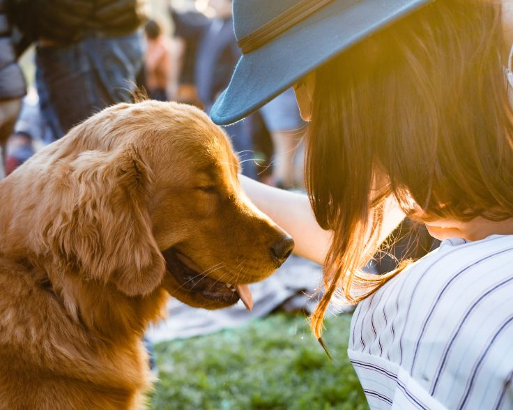 狗狗過世了,傷心之外還有各種情緒-unsplash.jpg